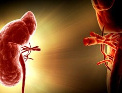 Ureterocystoneostomy